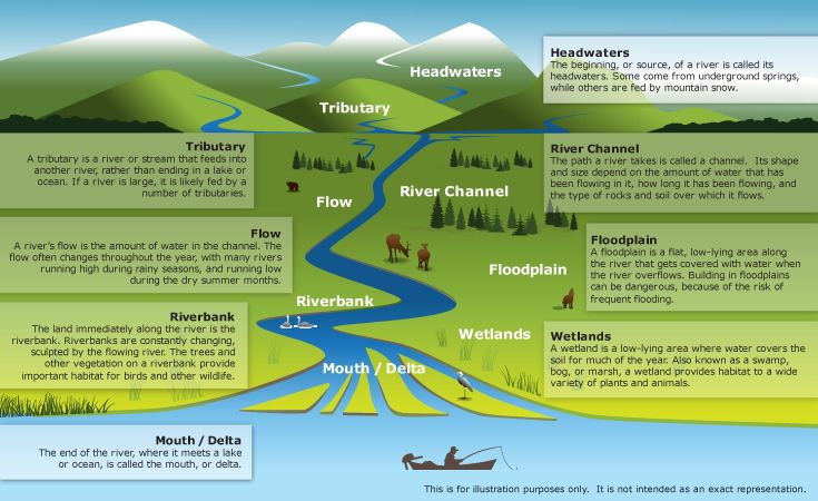 River diagram | Geography themes, River, Life science