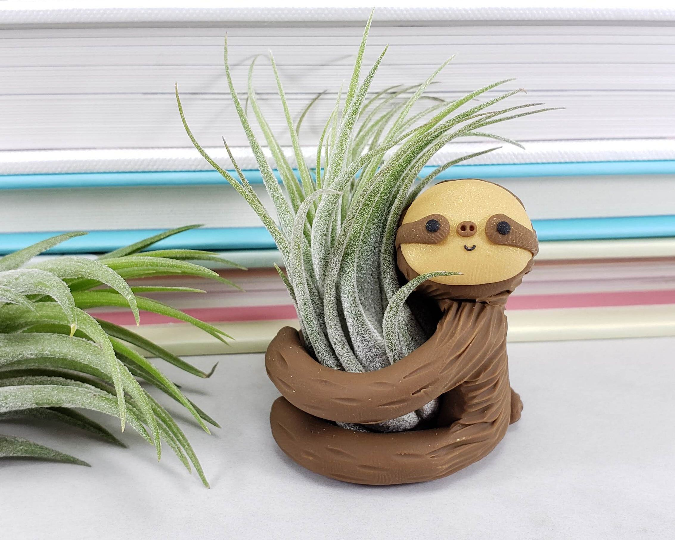Sloth Air Plant Holder, Gift Women, Small Sloth Planter