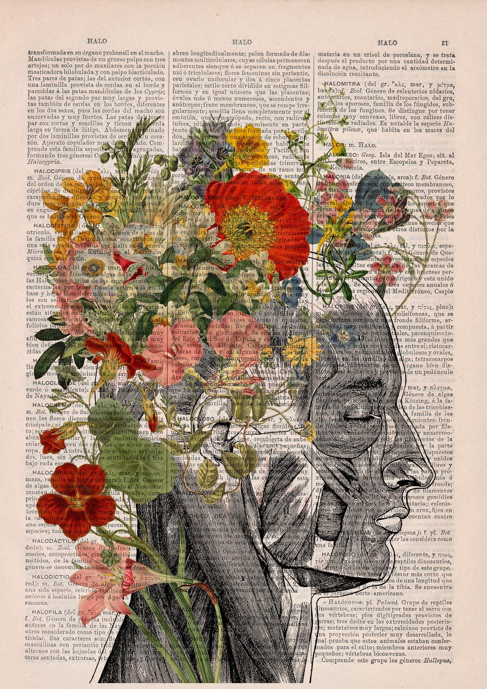 Spring decorations Woman gift Flowery Hair collage Printed on Dictionary Book page. Anatomy decor, Flower and butterflies print, SKA161