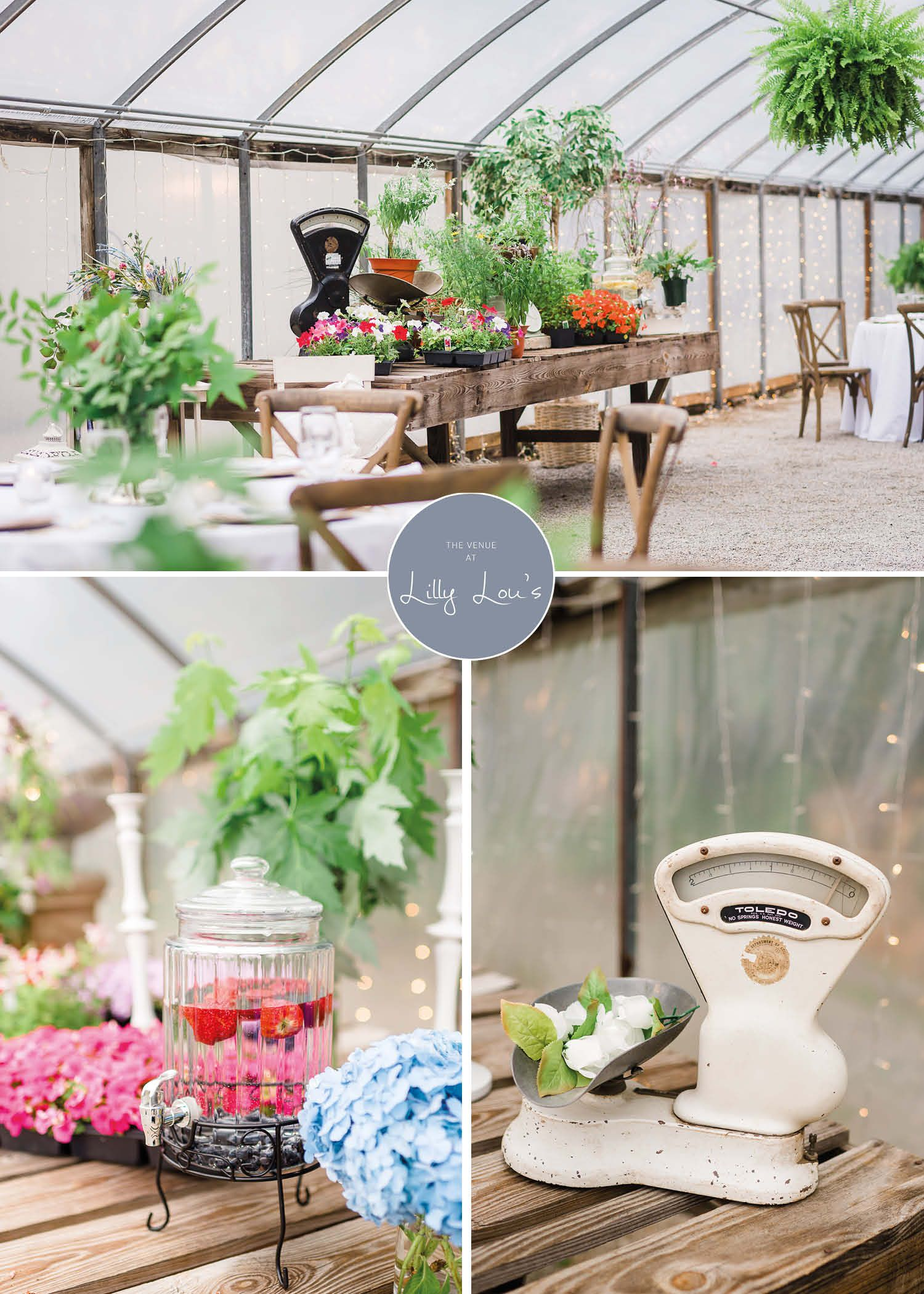 The Venue At Lilly Lou's | Georgia wedding venues, Wedding ...
