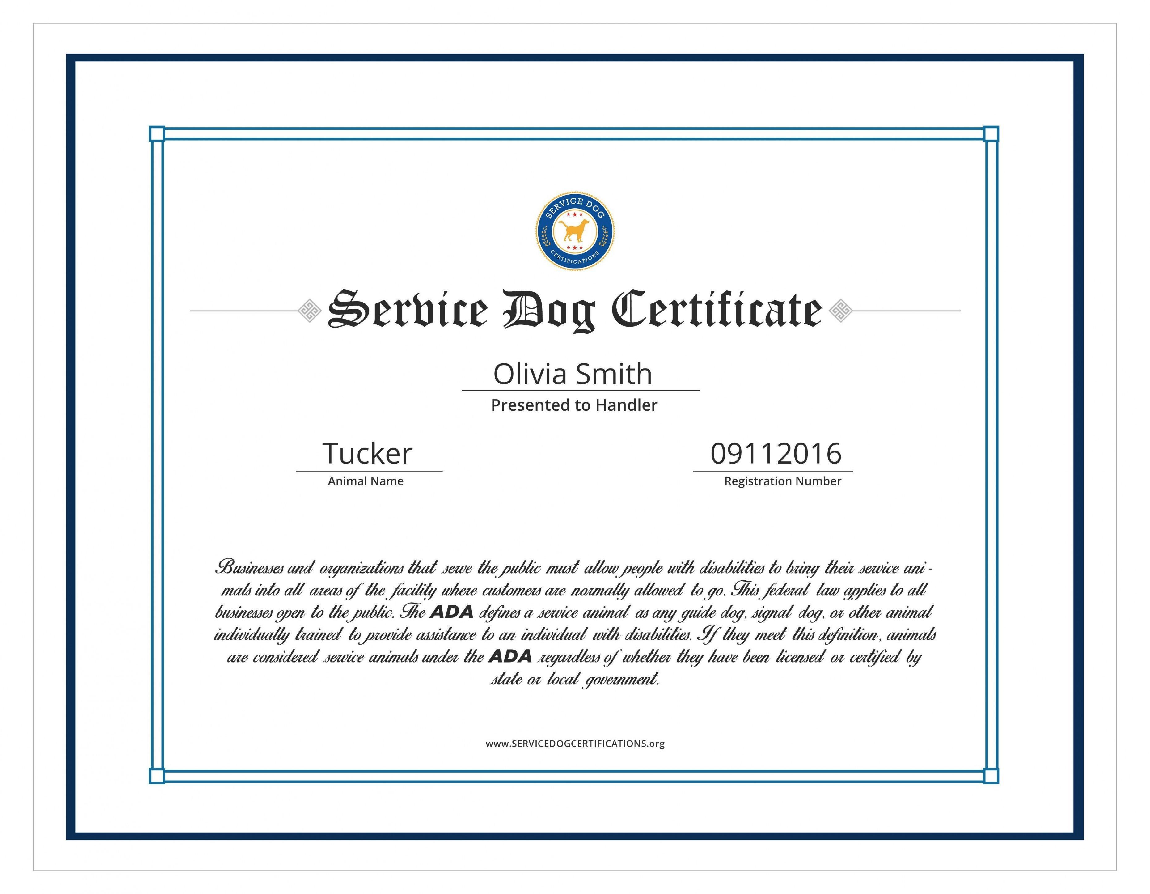 Service Dog Training Certificate Template In 2020 Certificate