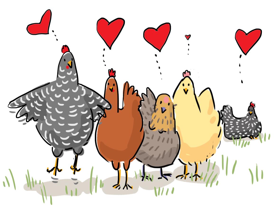 Курицы смешной рисунок, мальчику