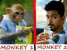 Image Result For Vijay Funny Images Funny Images Funny Pictures Funny Pics Funniest
