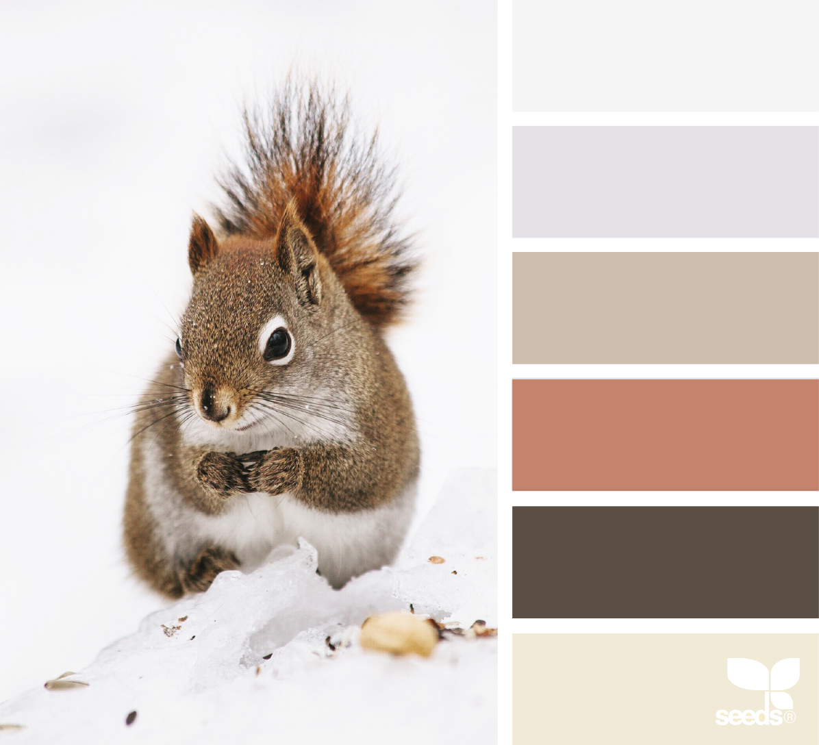 Creature tones colors pinterest color shop glidden paint at your local mccoys building supply and color match the shade you need nvjuhfo Images