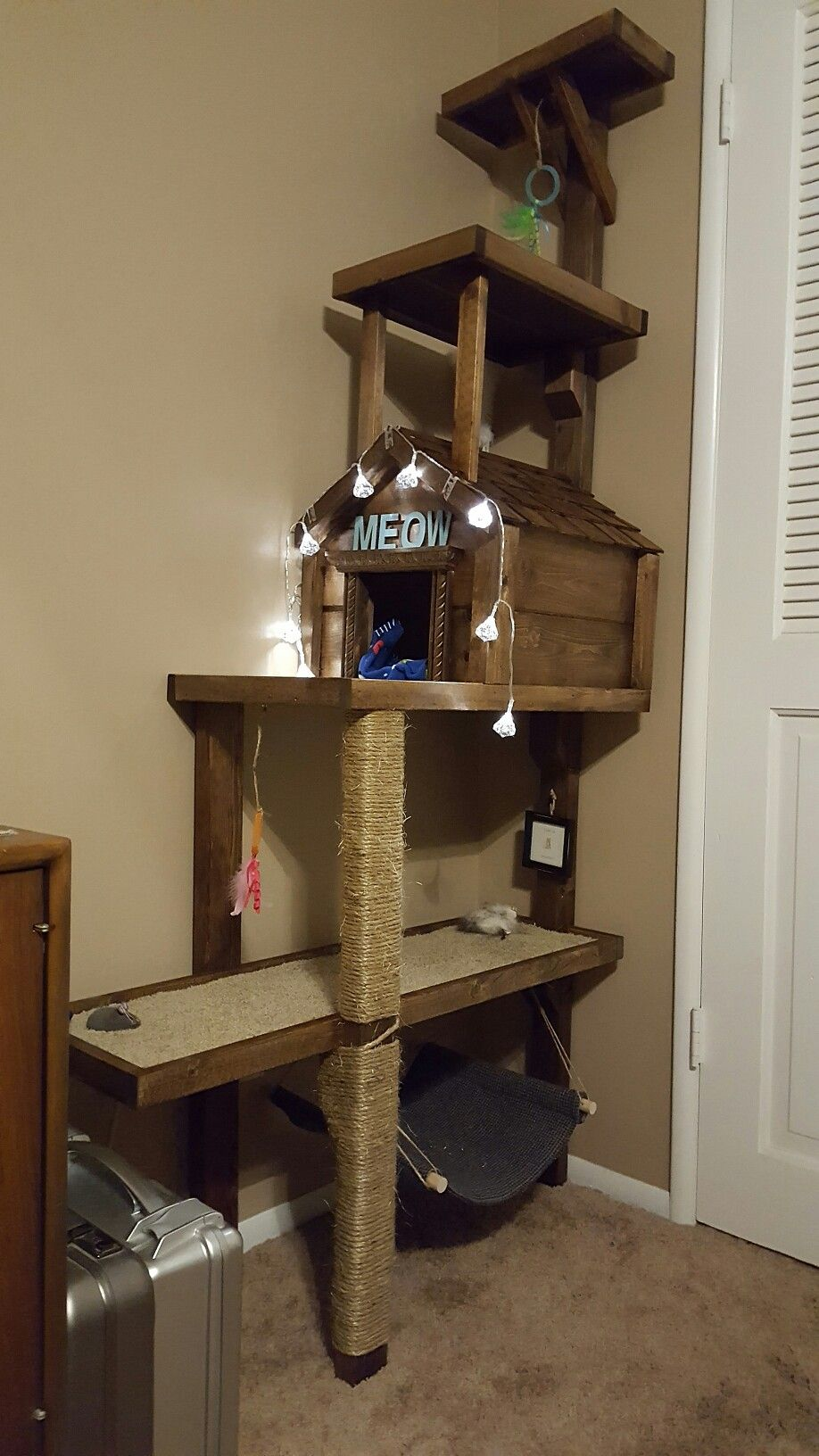 Designer Dog Leash Signature Braided 1 Largest Online Dog Boutique Cat Trees Homemade Diy Cat Tree Cool Cat Trees
