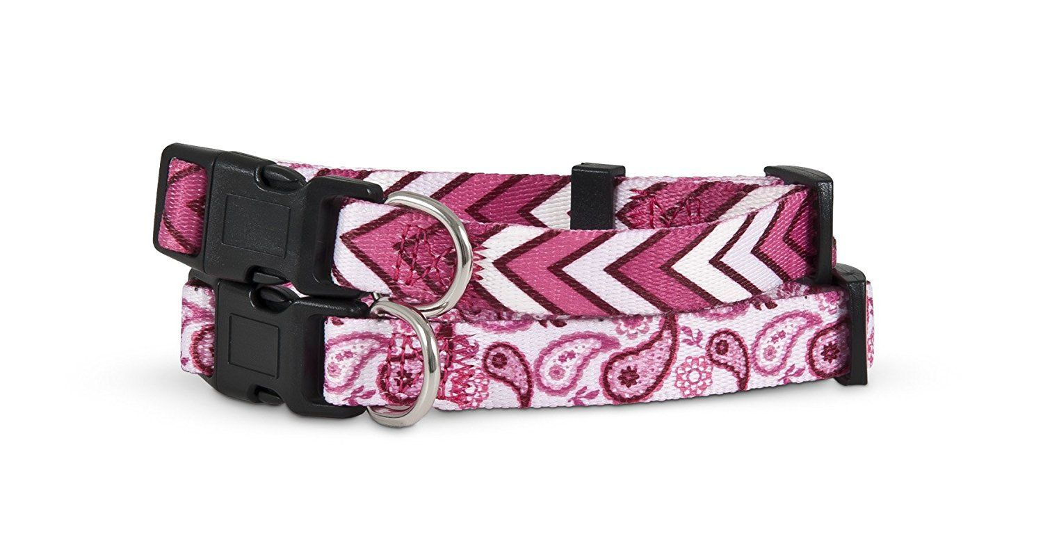 Petmate 11443 2-Side Pet Collar, 5/8 by 10 to 14-Inch, Paisley ...