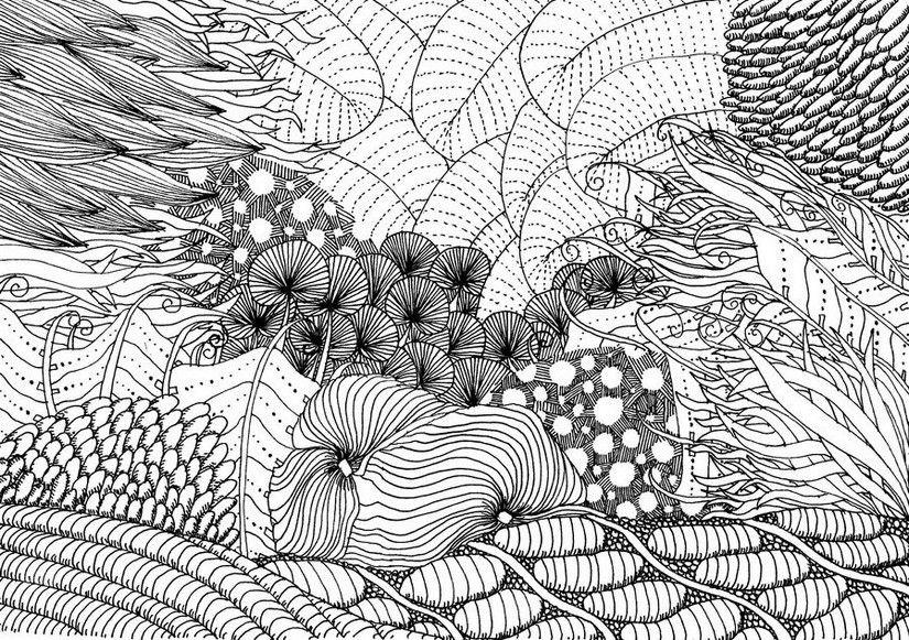 Fond marin (avec images)   Coloriage, Les arts, Dessin