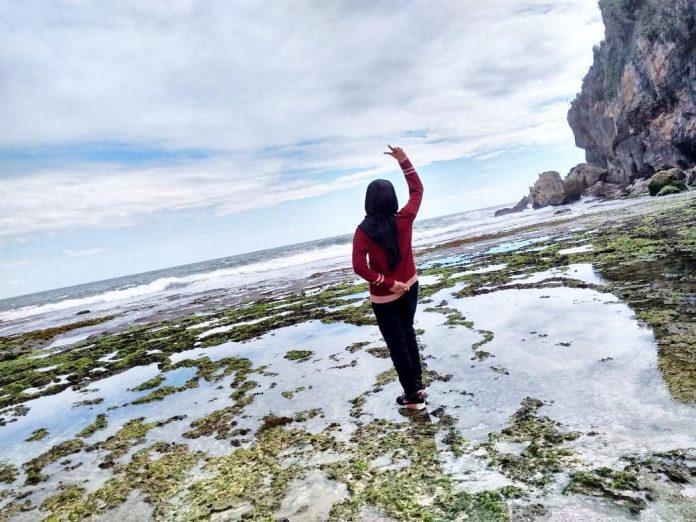 Pantai Kayu Arum Di 2020 Pantai Pemandangan Di Pantai
