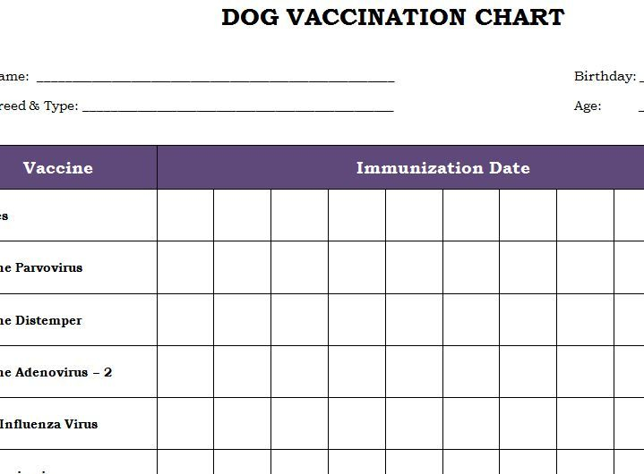 Dog Vaccination Chart Printable Template Productivity Checklists - chart template