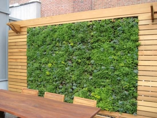 Vertikaler Garten Sichtschutz Terrasse Windschutz