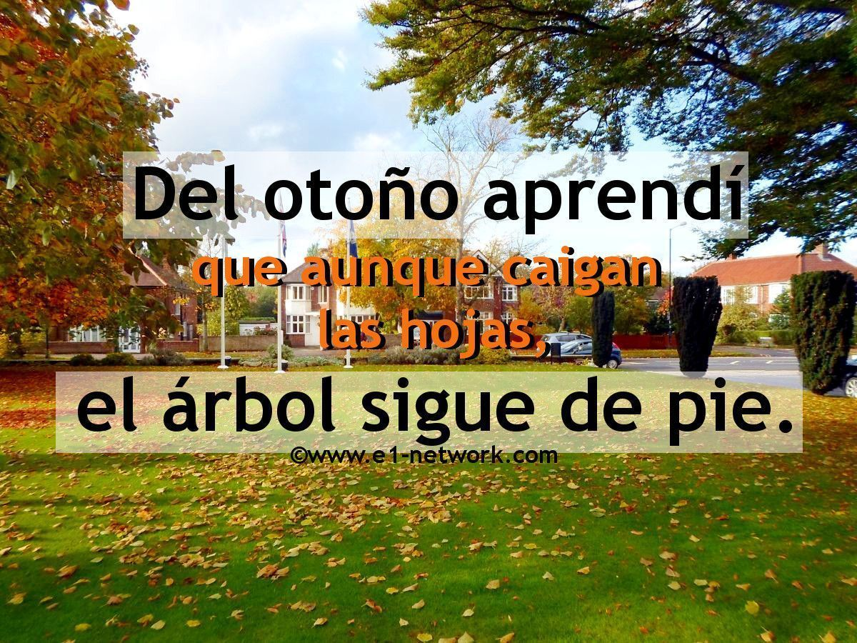 ¡Bienvenido Otoño! #otoño #frases #árbol #hojas #bienvenidootoño ¡Bienvenido Otoño! #otoño #frases #árbol #hojas #bienvenidootoño ¡Bienvenido Otoño! #otoño #frases #árbol #hojas #bienvenidootoño ¡Bienvenido Otoño! #otoño #frases #árbol #hojas #bienvenidootoño ¡Bienvenido Otoño! #otoño #frases #árbol #hojas #bienvenidootoño ¡Bienvenido Otoño! #otoño #frases #árbol #hojas #bienvenidootoño ¡Bienvenido Otoño! #otoño #frases #árbol #hojas #bienvenidootoño ¡Bienveni #bienvenidootoño