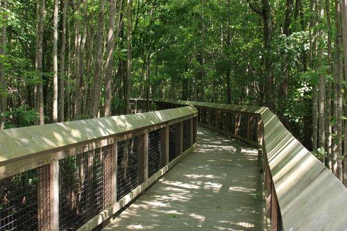 louisiana national parks photos | Louisiana Purchase State Park Walkway