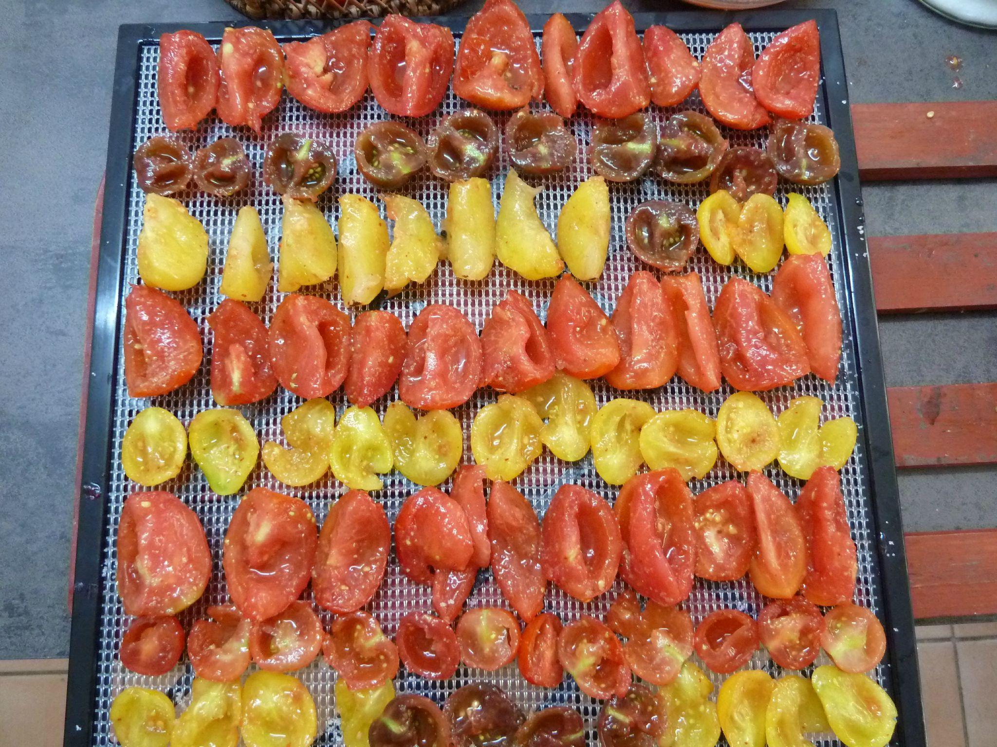 Deshydrater les fruits et legumes passion potager d sydrateur cuir de fruit pinterest - Cuisiner les tomates sechees ...