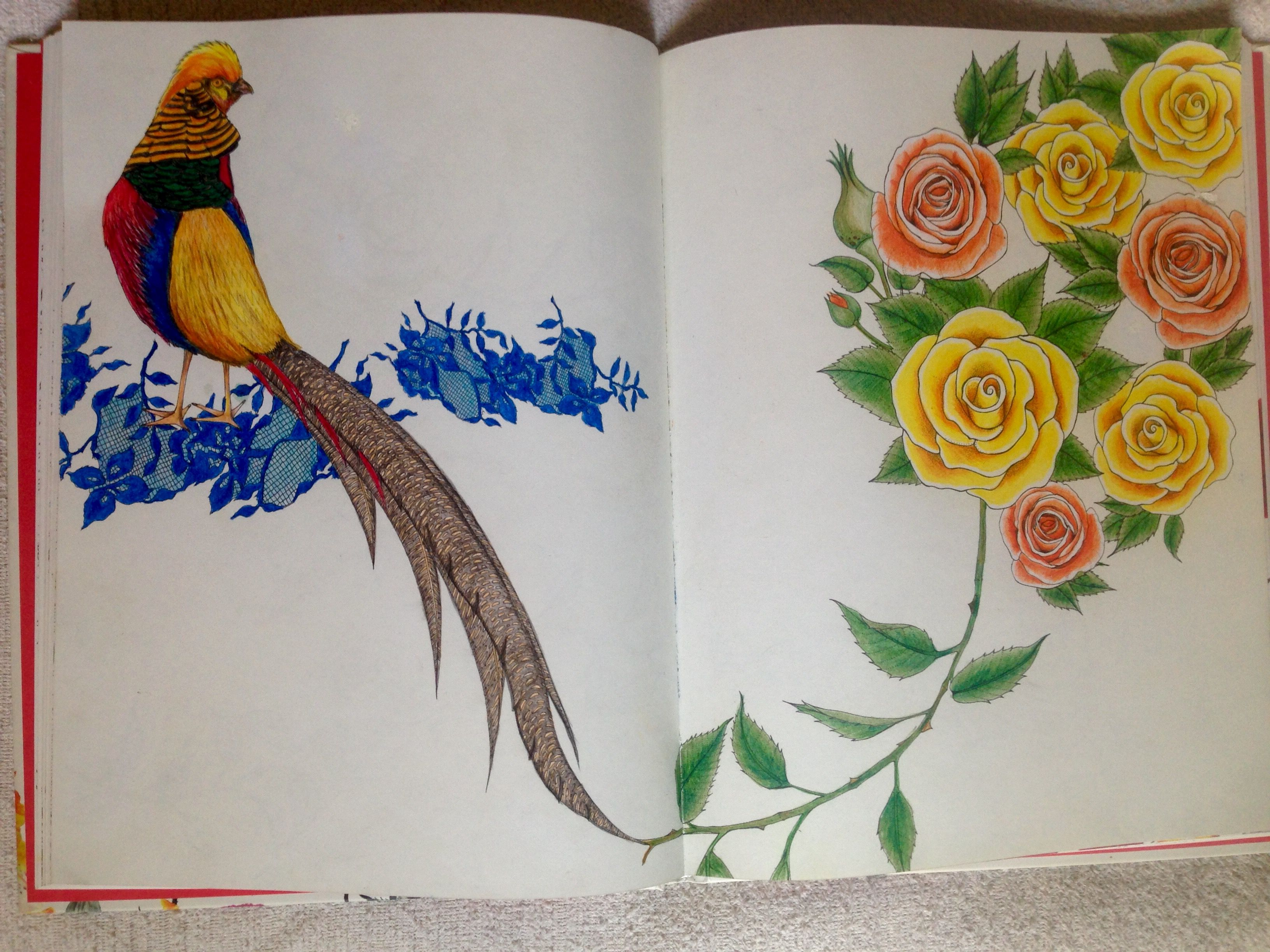 Pin On Adult Coloring Books Treasury 2