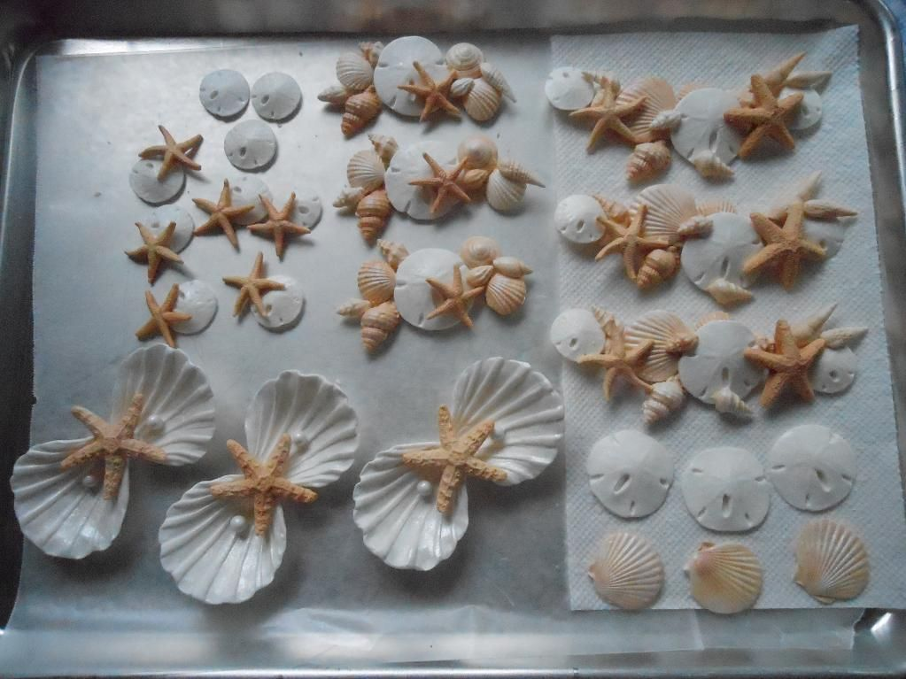 25 Stunning Seashell Projects