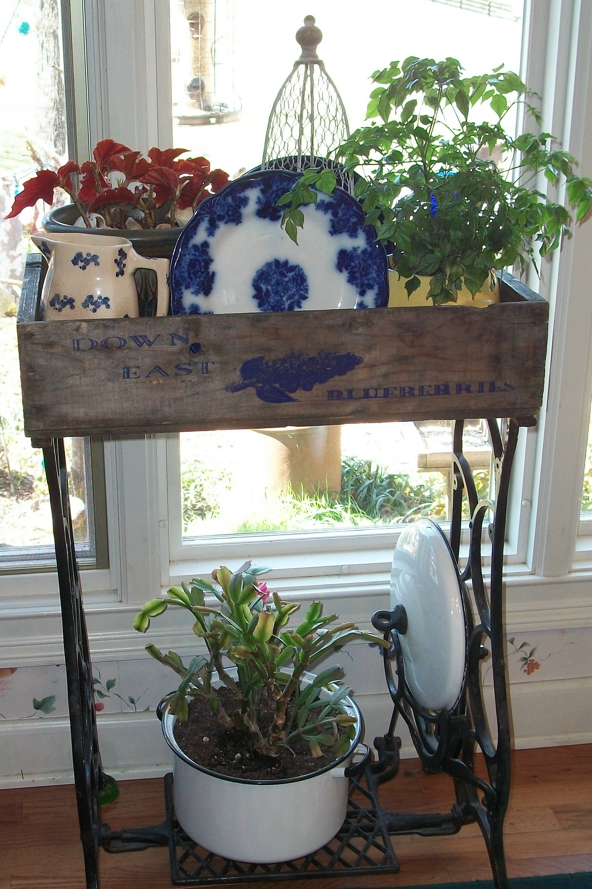 Old sewing machine base, old blueberry crate, plates, pitcher and plates.... in front of dining room window.