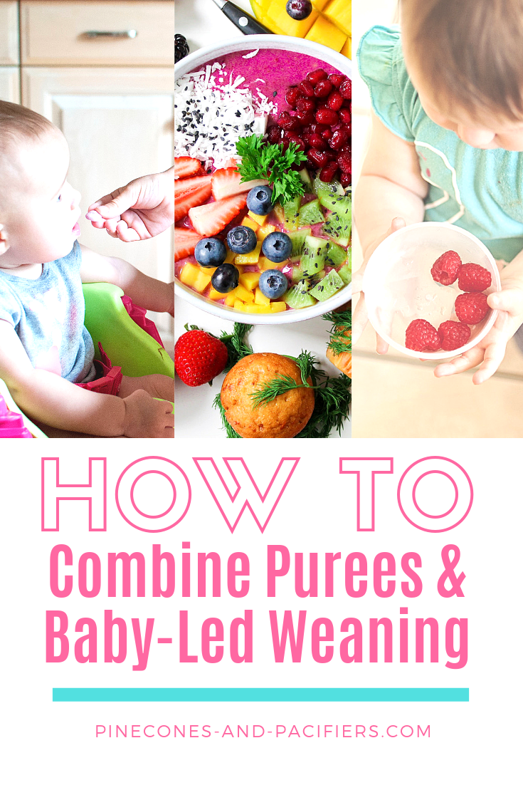 Combine Baby Pictures : combine, pictures, Combing, Purees, Baby-Led, Weaning, Weaning,