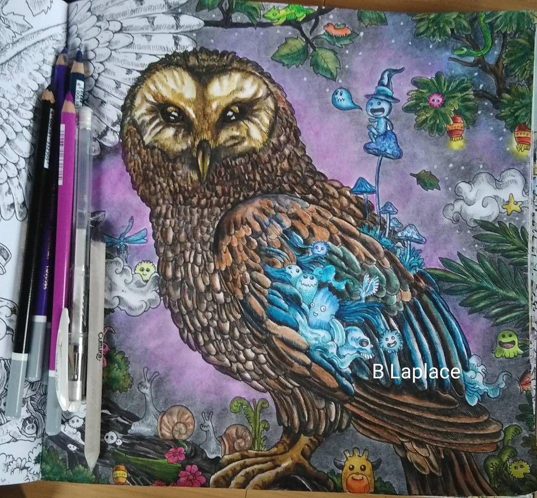 """0 mentions J'aime, 1 commentaires - Bənə Dicte (@mapetitegalerie) sur Instagram : """"#animorphia #coloriagesmarabout #cahierantistress #owl #chouette #arttherapie…"""""""