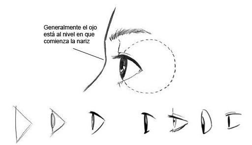 bleach,balck cat y daeth note y hacer ojos manga y anime | Dibujar ...