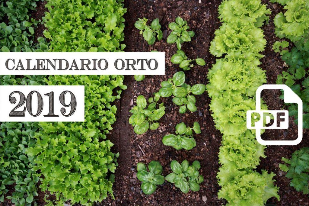 Calendario Trapianti Orto Pdf.Calendario Dell Orto 2019 Di Orto Da Coltivare In Pdf