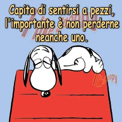 Stanchezza frasi divertenti vignette cartelli for Vignette buongiorno divertenti
