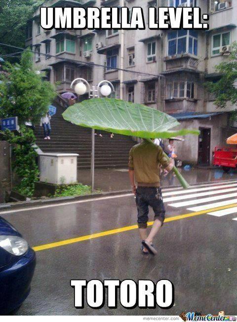 umbrella level: totoro