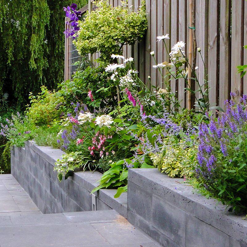 Qualitas exsto ontwerp advies buro tuinontwerp for Aanleg kleine tuin