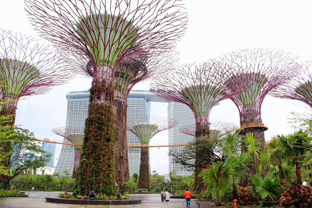 Garden By The Bay Food cool singapore gardenthe bay amazing photos (part 2) check