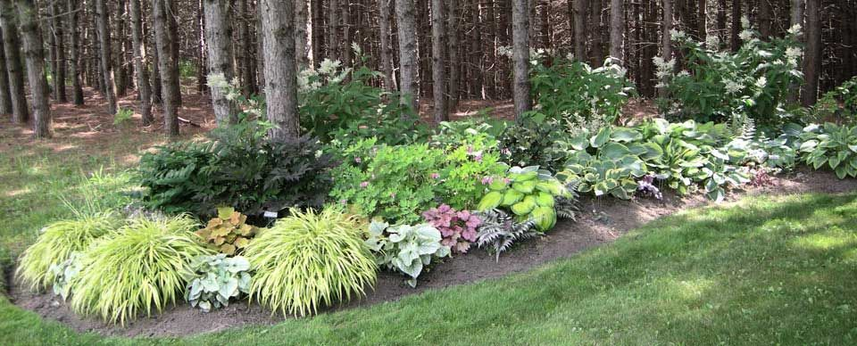garden ideas - Flower Garden Ideas Partial Sun