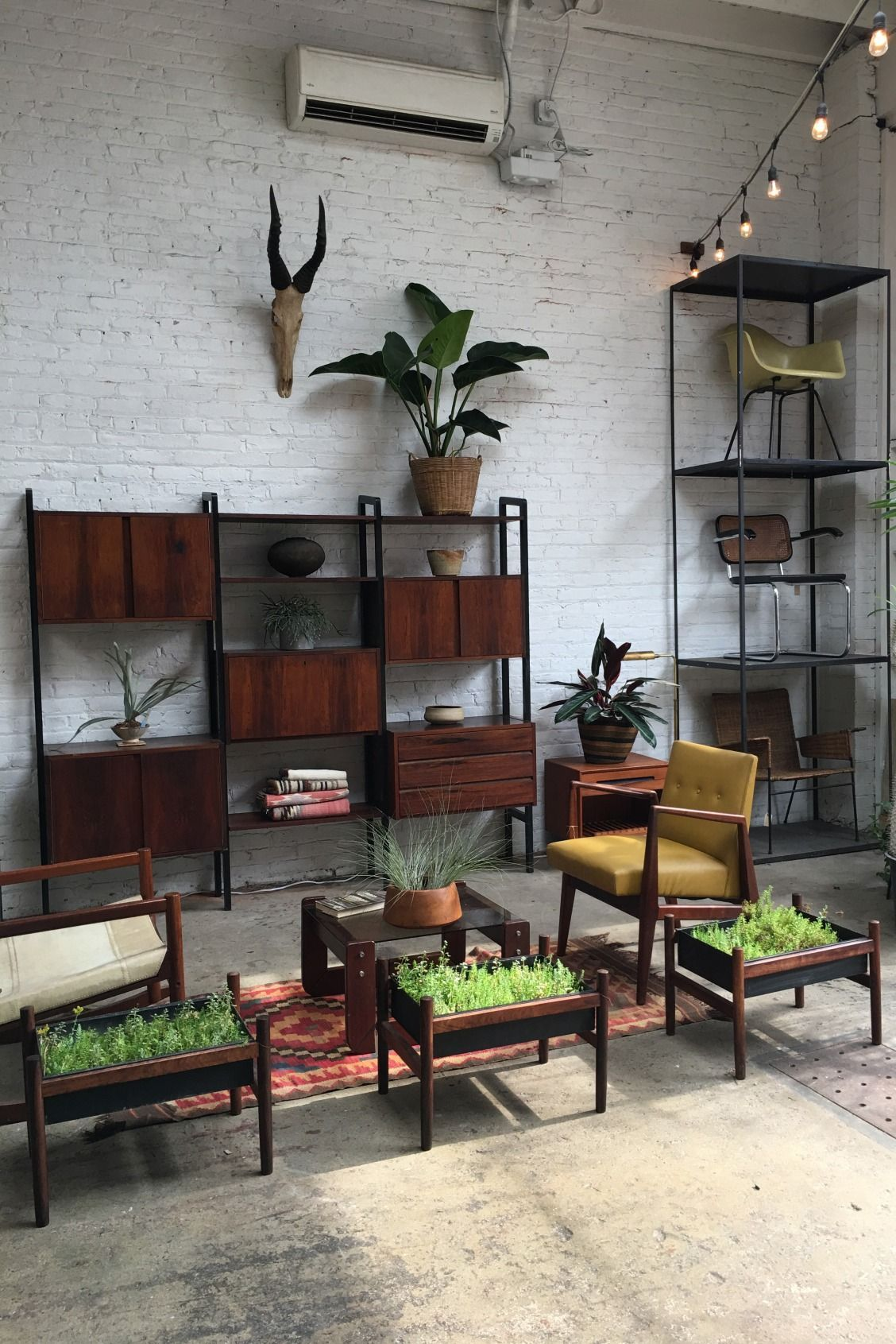 A plant-loving vintage collector\'s dream. The retail space of Etsy ...