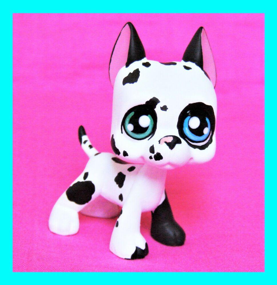 Littlest Pet Shop Great Dane Calico Ooak Custom Figure Lps Dog