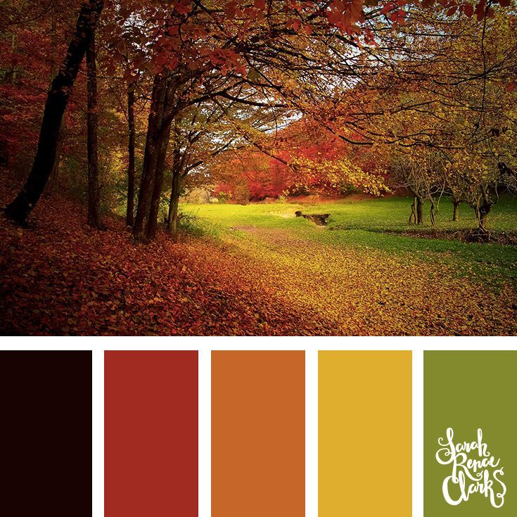 Autumn Color Palette Green Yellow Orange And Red Color Combination Click For M Color Schemes Colour Palettes Apartment Color Schemes Green Colour Palette