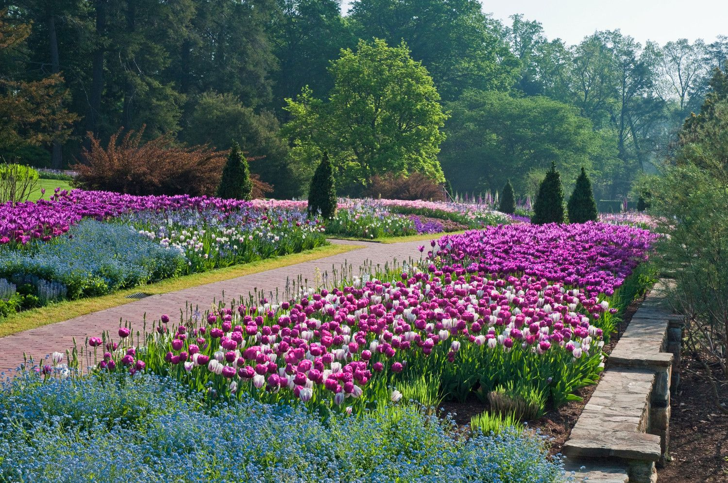 Spring Is In Full Bloom At Longwood Gardens. Description From  Unionvilletimes.com. I