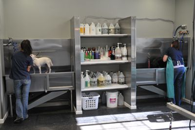 Repinned Dog Grooming Tubs Dog Grooming Tubs Dog Grooming Salons Dog Grooming Shop