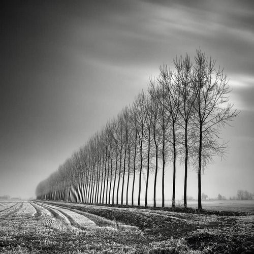 """ Specializing in long-exposure photography, Pierre Pellegrini's images are dreamlike, timeless, and expressive of noise-free environments.   """