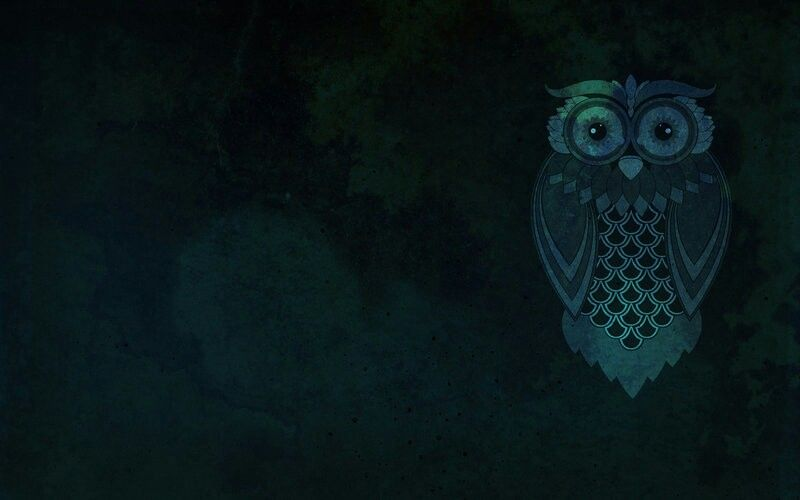 Owl Background Owl Wallpaper Owl Background Desktop Wallpaper