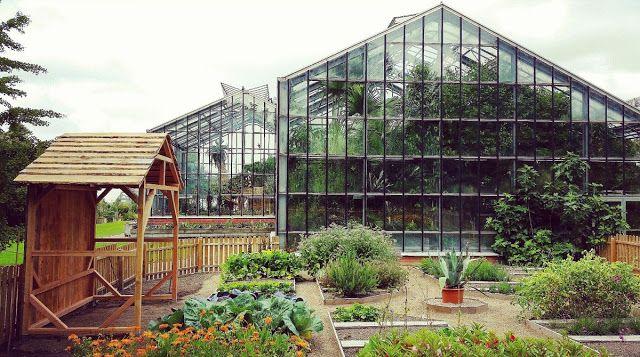 Kiel Insights Botanischer Garten  Kiel     Kiel Garden und Garten