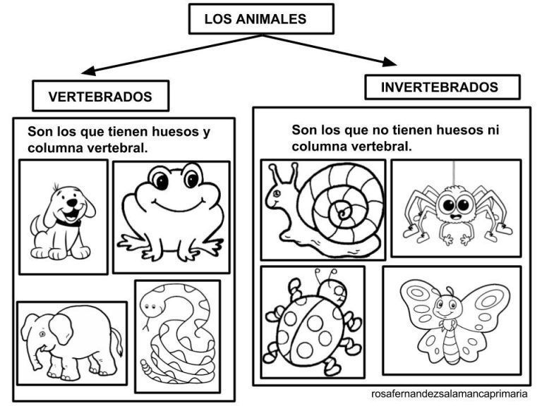 Magnificent Animales Invertebrados Para Colorear 25 For Child With Animales Invertebrados Para Colo Fish Coloring Page Science Fair Projects Science Activities