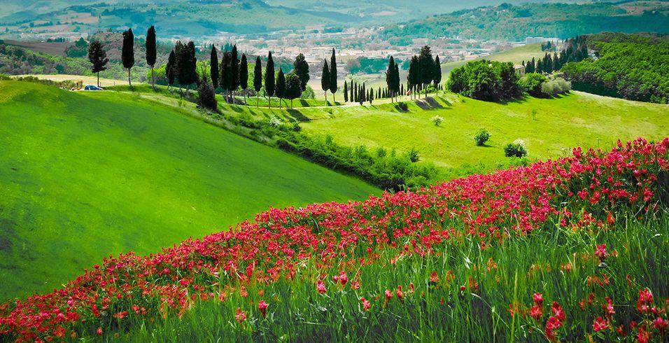 Rezultat iskanja slik za primavera italia