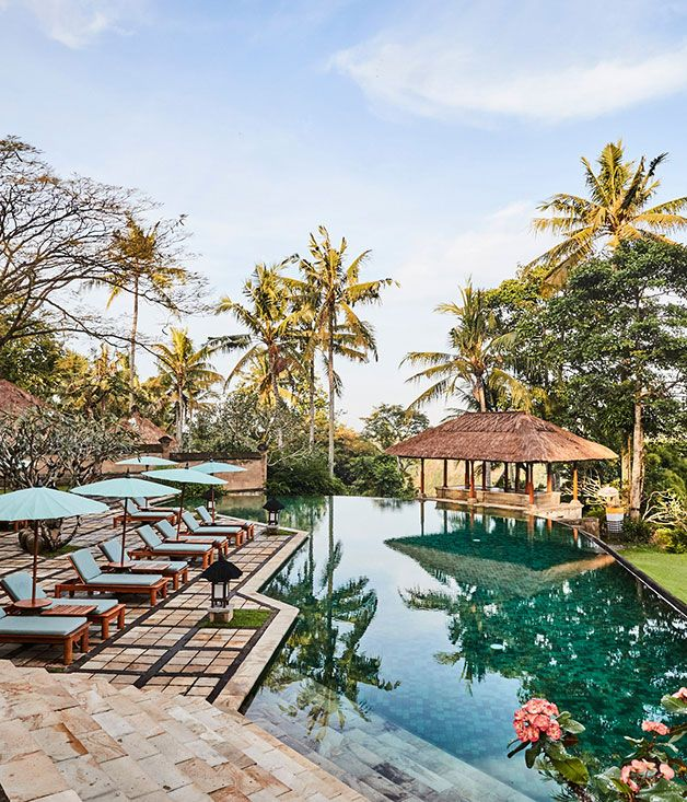Exploring Indonesia S Komodo National Park Amazing Swimming Pools Swimming Pool House Swimming Pool Designs