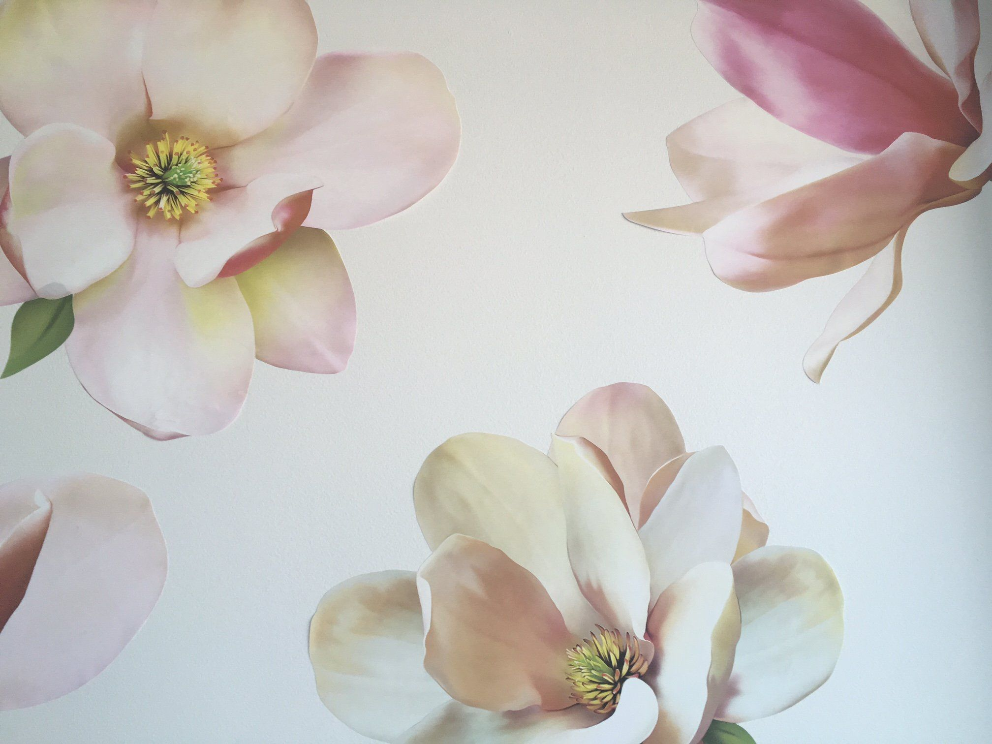 Large Magnolia Decals Flower Wall Decals Eco Friendly Flower Wall Stickers Wall Dressed Up Flower Wall Decals Flower Wall Stickers Magnolia Nursery Decor