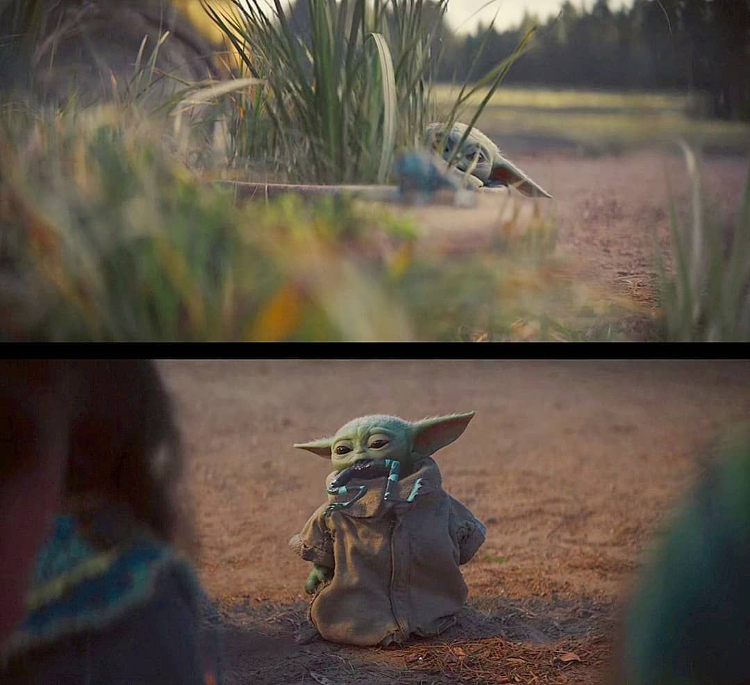 Looks Like Baby Yoda Learnt How Not To Eat A Frog Episode 2 Parallel Sanctuary Episode4 Felt Cute Might Eat A Frog Later Idk Yoda Cute Mandalorian