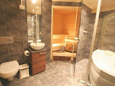 Small Sauna In Bathroom Sauna Pinterest Saunas Basements And Basement