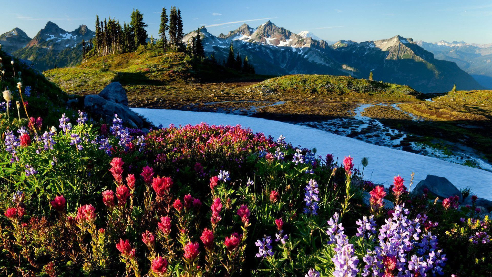 Springtime Mountains Wallpapers Wide Backgrounds Desktop
