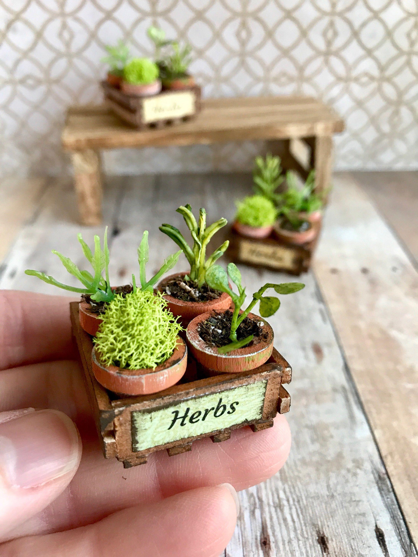 Miniature Herbs Dollhouse Garden Crate Fairy Garden Plants