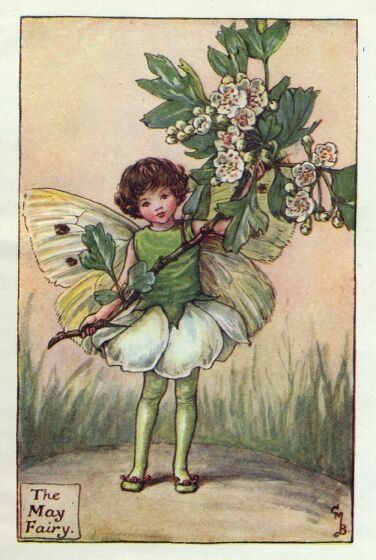 May Flower Fairy original vintage print. Printed c.1927 it is by the artist/author/illustrator Cicely Mary Barker. The May Flower Fairy was one was one of Cicely Mary Barker's Spring Flower Fairies.