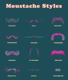 moustache styles...I never knew there were so many.
