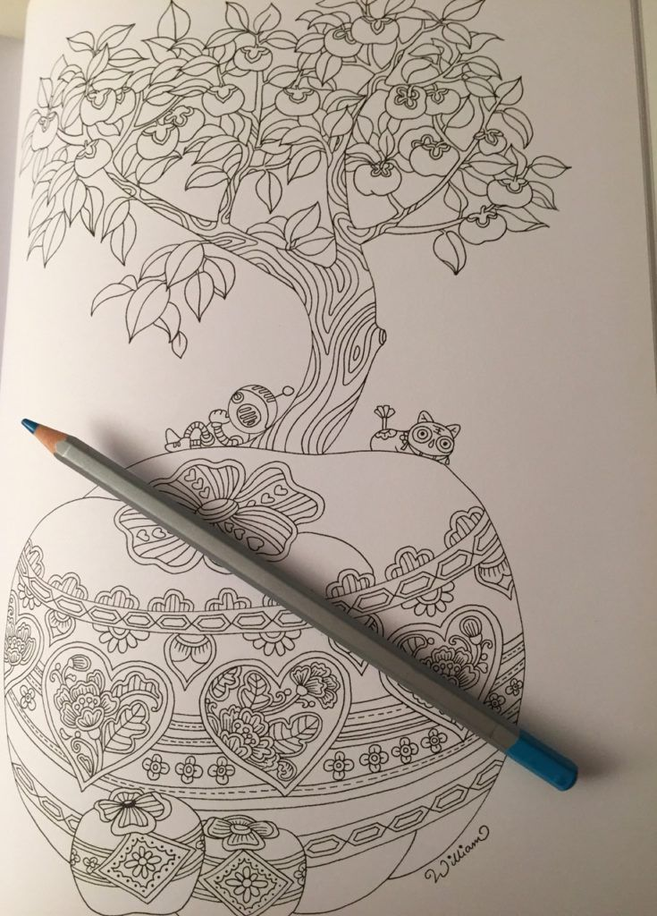 Colouring Chinoiserie A Sophisticated Activity Book Coloring Queen Coloring Books Color Pencil Art Book Activities