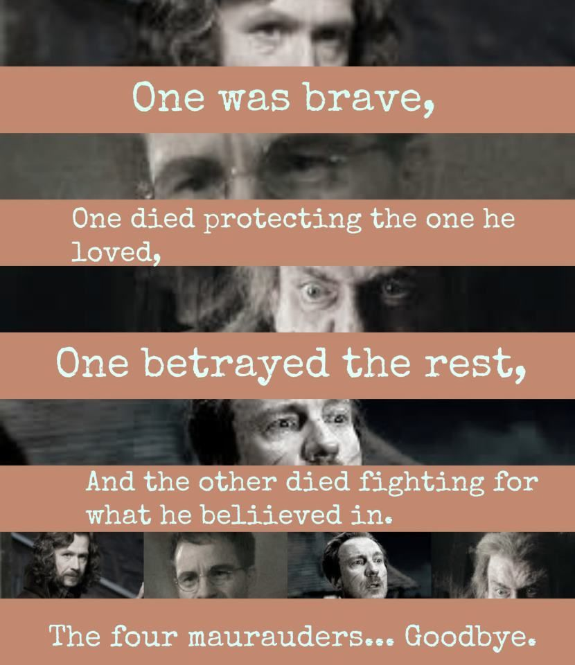 Moony<3  Padfoot<3 Prongs<3  I Personally Believe Wormtail Is Unworthy Of The Marauders, He Lost That Honor  The Moment  He Gave James And Lily Up To Voldemort.