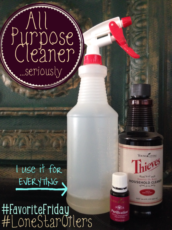 Fave Friday All Purpose Spray Seriously Health